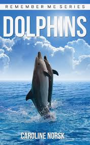 buy dolphins amazing pictures u0026amp interesting facts children
