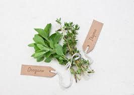 origan en cuisine herbes fraîches d origan et de thym image stock image du organique