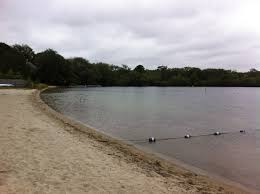 wixon memorial beach on long pond cape cod online