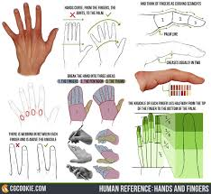 human reference hands and fingers by cgcookie on deviantart
