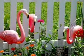 creator of plastic pink flamingo dies one day before pink flamingo