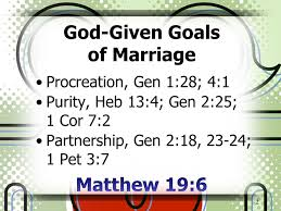 marriage proverbs affair proof your marriage proverbs 7 1 5 god given goals of