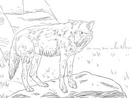 eastern wolf coloring free printable coloring pages