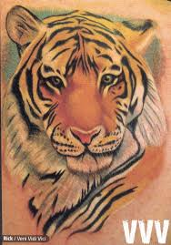 traditional tiger for photos pictures and