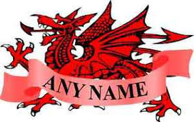 personalised welsh dragon temp tattoo ideal for hen stag or just