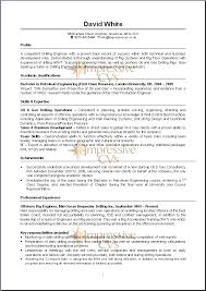 Resume Examples Pdf 9 Cv Examples Pdf Budget Template Letter
