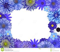 Purple And Blue Flowers Blue Flower Frame Stock Images Image 29933244