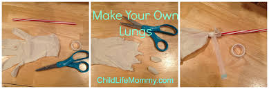 make your own lungs child life mommy