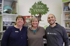 Cat Treehouse Alley Cat Allies From The Field Tree House Humane Society And