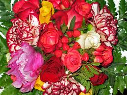 bouquet of roses free images petal color