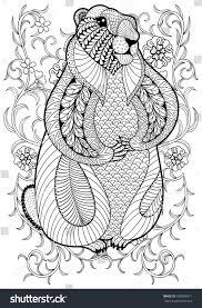 hand drawn artistic marmot groundhog flowers stock vector
