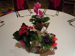 Potted Plants Wedding Centerpieces by 45 Best Potted Plants Images On Pinterest Potted Plants Potted