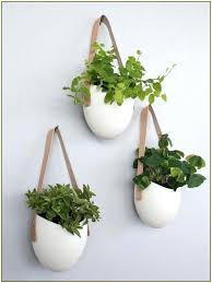 plant wall hangers indoor wall mount plant holder terrarium design indoor wall mounted plant
