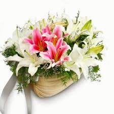 buy flowers online 613 best buy flowers online buy cake online send flowers to