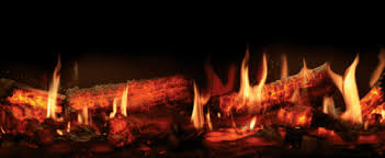 Realistic Electric Fireplace Insert by Electric Fireplaces Stoves And Inserts Godby Hearth And Home