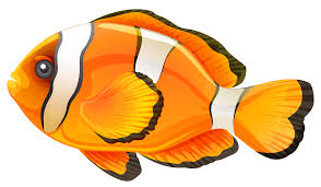 clownfish clipart 46 cliparts