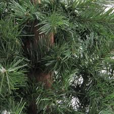 accessories lighted trees 10 ft unlit