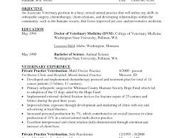 cv format for veterinary doctor veterinary resume foodcity me