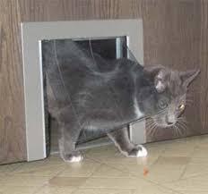 Interior Pet Door For Cats Pet Pass Thru