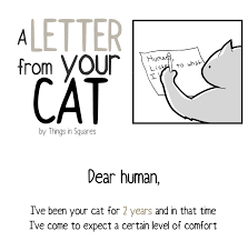 your cat has written you a letter and you must read it bored panda