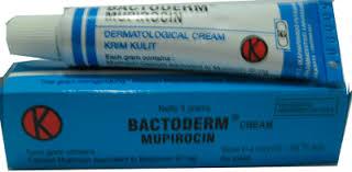 Salep Ikaderm antibiotik bactoderm mupirocin krim 10 grm