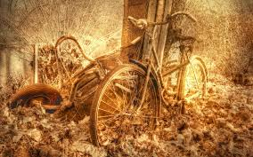 antique halloween background vintage bicycle backgrounds by bent leacy on goldwallpapers com