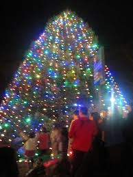 wayne pa tree lighting rainforest islands ferry