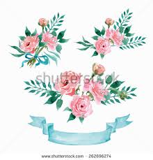 wedding flowers drawing vector flowers set colorful floral collection stock vector