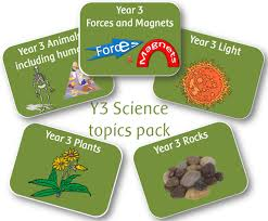 year 3 science animals including humans worksheets powerpoints