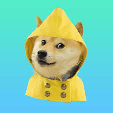 How To Make A Doge Meme - can we make it rain dogecoin on social media let s find out much