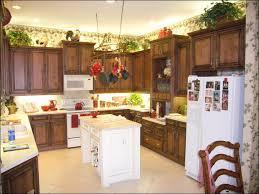 Expensive Kitchens Designs by Kitchen Aq Modern Impressive Kitchen Glorious Kitchen Cabinet