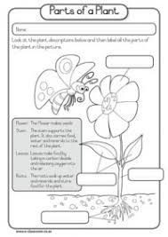 numerous printable science sheets see if there are any you can
