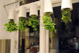 kitchen herb garden ideas kitchen herb garden design riothorseroyale homes how to make