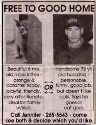 Newspaper Cat Meme - funny newspaper article he says he goes or the cat goes so