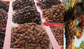 fresh dates fruit leading countries growing dates fresh date palm fruits
