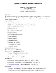 Resume Samples Areas Of Expertise by Underwriter Resume Sample Haadyaooverbayresort Com