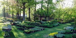 Botanical Gardens In Nj Rutgers Gardens Events Event Venues In New Brunswick Nj
