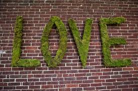 moss covered letters inspiration and ideas moss united with