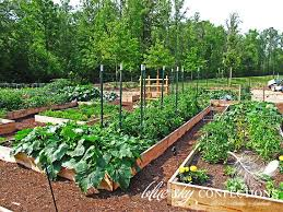 26 best garden images on pinterest raised bed gardens raised