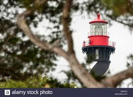 the historic st augustine florida lighthouse seen through trees