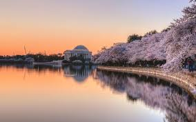 Best Public Gardens by Best Gardens In Washington Dc Travel Leisure