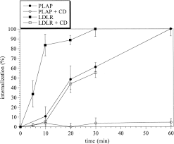 induction of caveolae in the apical plasma membrane of madin darby