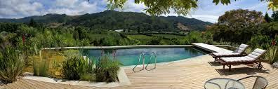 Natural Swimming Pool Natural Pools Nz Eco Friendly Swimming Pools Chemical Free
