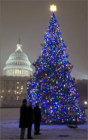led christmas tree lights led light christmas trees happy holidays