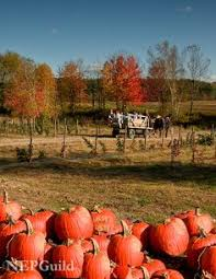vermont fall foliage pictures 2010 gallery vt maple products