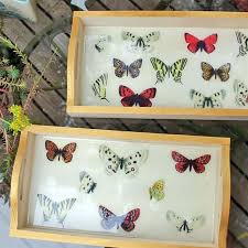 butterfly serving platter 267 best diy boxes trays images on keepsake boxes