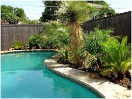 Landscaping Ideas For Backyards by Backyards Ergonomic Backyard Pool Landscaping Pictures Backyard