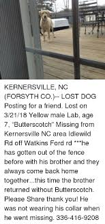 kernersville nc forsyth co lost posting for a lost on