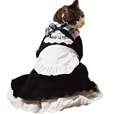 cat costume for halloween cute cat costumes for kitties