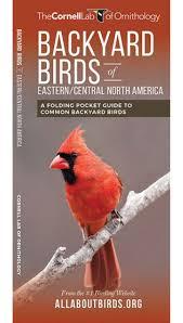 backyard birds of eastern central north america a folding pocket